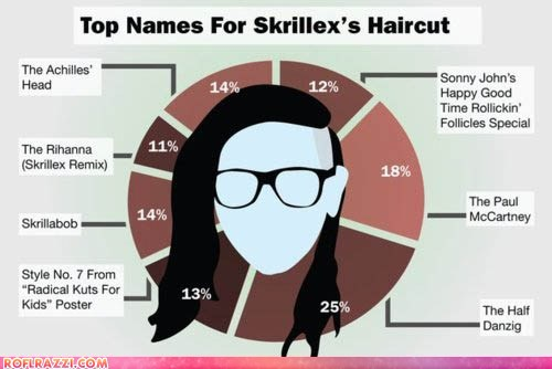 Top Names For Skrillex's Haircut