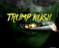 Trump Kush Cover Art