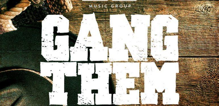 dg-gang-them-artwork